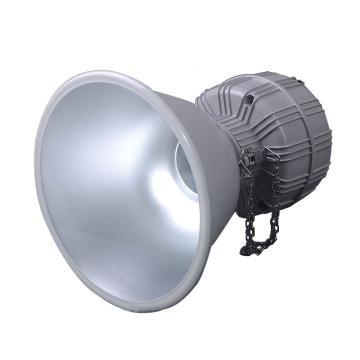 卓安照明 高顶灯,ZGT607-I-150W,不含安装附件,单位:个