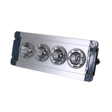 卓安照明 LED顶灯,ZGD202-12W,含U型支架,单位:个