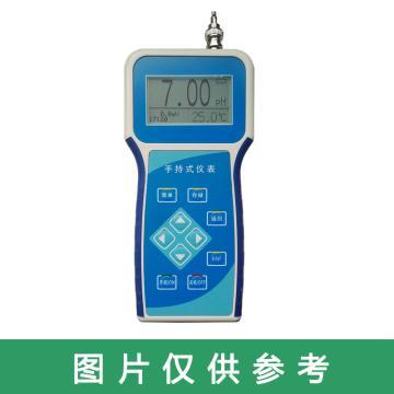 磊信 便携式PH分析仪,LX602E 0~14pH,成套精度0.01pH