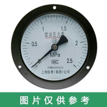 上仪 禁油压力表,YO-103 0-2.5MPa M20*1.5 轴向前带边 碳钢+铜