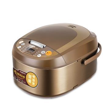 龙的 智能电饭煲,LD-FS50A 按键式 容量5L 单位:台