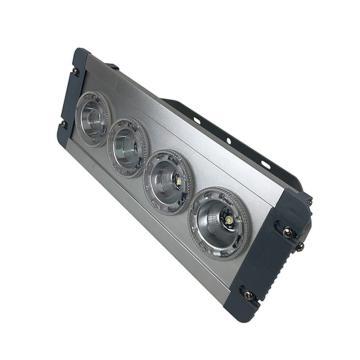 卓安照明 LED应急顶灯,ZGE202-12W,含U型支架,单位:个
