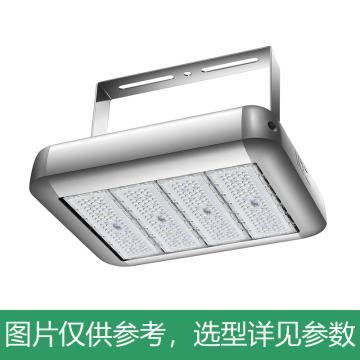 京泽 LED 投光灯,300W 白光5700K,NJZ-FLB-300,单位:个