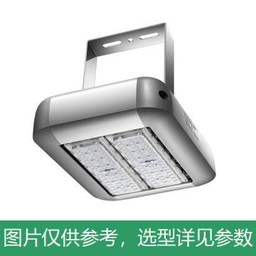 京泽 LED 投光灯,100W 中性光4000K,NJZ-FLB-100,单位:个