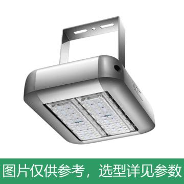京泽 LED 投光灯,100W 白光5700K,NJZ-FLB-100,单位:个