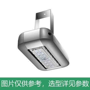 京泽 LED 投光灯,50W 中性光4000K,NJZ-FLB-50,单位:个