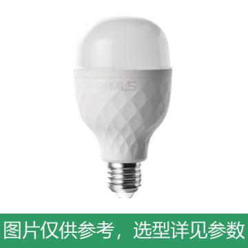 木林森 LED灯泡,T泡WA2W48-48 功率48W白光6500k,单位:个