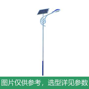 华朗 太阳能LED路灯,40W,60AH,12V,6000LM,中性光,HL-TYN015,高6M,含配件,单位:套