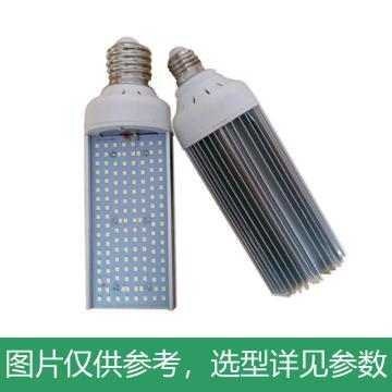 津达 LED路灯,工厂高温环境适用,60W,黄光,KD-LUDENG系列,E40灯头,不含配件,单位:个