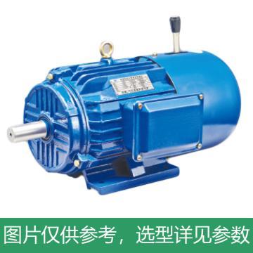 方力FANGLI 电磁调速电机 电磁制动三相异步电动机,YEJ-200L-8,15kW,B3
