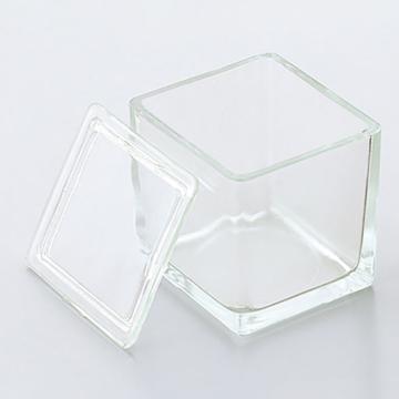 亚速旺(ASONE)方形层析缸 10130530(1个),C1-4864-01