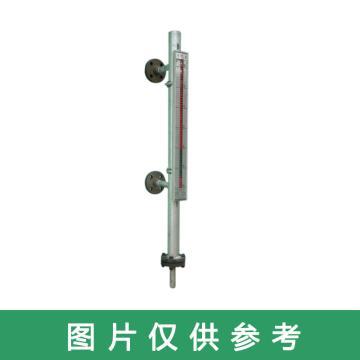 长春锅炉仪表 磁翻板液位计,B49-10-CF06
