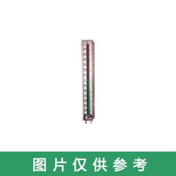 长春锅炉仪表 光电磁浮液位计,B69-32/2-CF03 L=1130