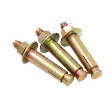 碳钢彩锌电梯膨胀螺丝,M10*100,20个/包