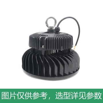 悦泰 LED高天棚灯,150W,白光,DN8600,含U型支架,单位:个