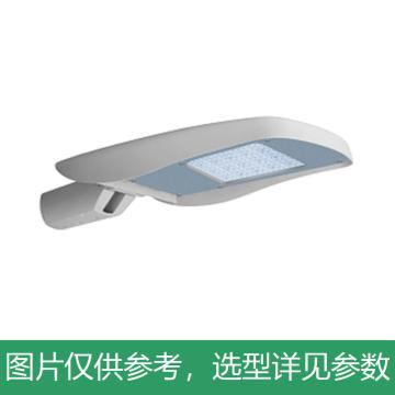 悦泰 LED路灯,100W,白光,DN8200,可调节路灯,不含灯杆,单位:个