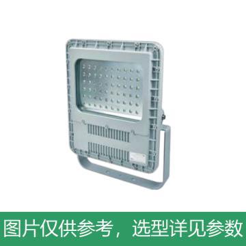 创正电气 LED灯,120W,CZ0878支架式安装(替代原CZ0871YJ-L250G),单位:套