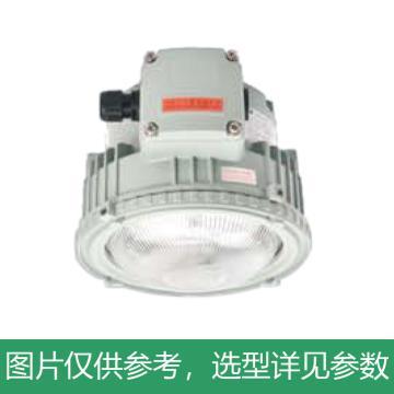 创正电气 LED灯 30W,CZ0873/4B-LED30W-2-B+D8722/1,AC100~250V,IP66 吸顶式安装,单位:套