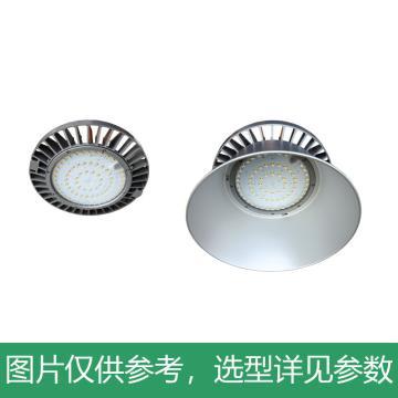 深圳海洋王 NGC9823 LED高顶灯 含灯反 含挂钩 230W,单位:个