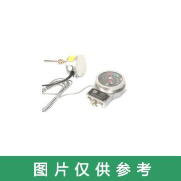 东河力华 主变温度控制器,DHTTK-300-T9-LH