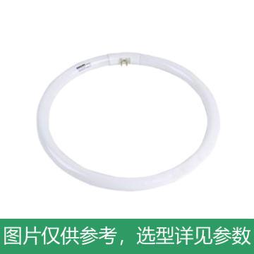 飞利浦 22W T5三基色环形荧光灯管,Essential T5C 22W/840 中性光 色温4000K,单位:个