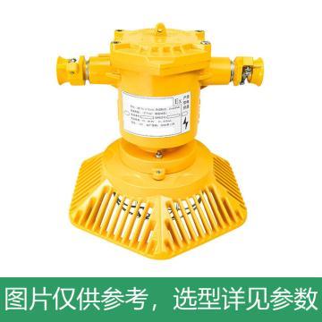 正安 LED巷道灯,30W,DJS30/127L(A),煤安证号MAH200208,单位:个