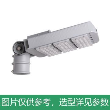 永鑫瑞 LED路灯,150W白光,YXR-SL-150W-D-HS,单位:个
