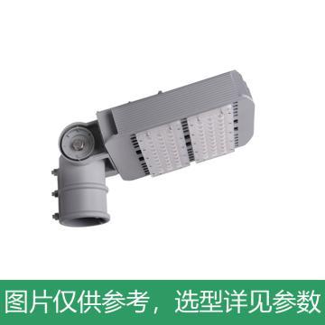 永鑫瑞 LED路灯,100W白光,YXR-SL-100W-D-HS,单位:个