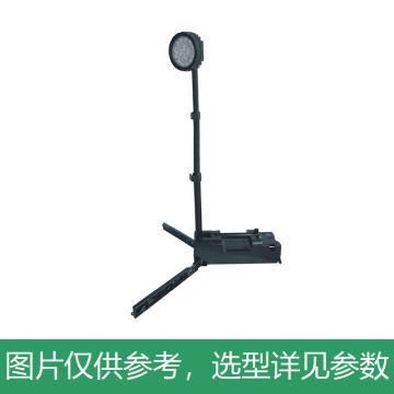 正辉 LED便携式灯,50W,BFD8122,单位:个