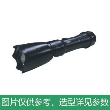 正辉 LED多功能强光工作灯,3W,BNW6012,IP66,单位:个
