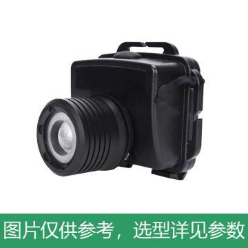 惠乐为 头灯,ML6002D 微型头灯,单位:套