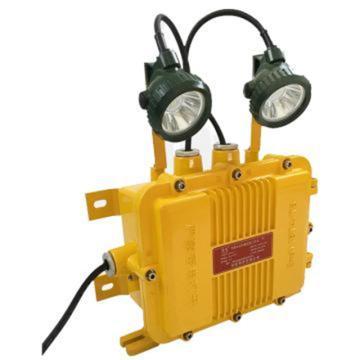 倬屹 LED应急照明灯,2*3W,BZY8610A,单位:个