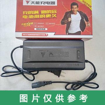 天能 蓄电池60V32AH充电器