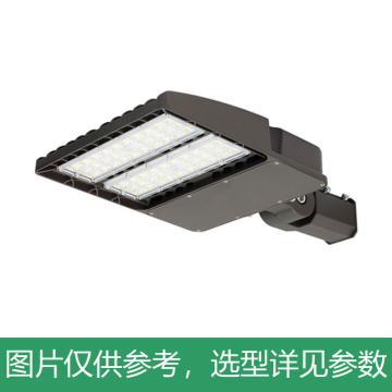 永鑫瑞 LED路灯,100W白光,YXR-SL-100W-E-HS,不含灯杆,单位:个