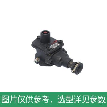 六班电气LIUBAN ELECTRIC 矿用隔爆型控制按钮,BZA1-5/36-1