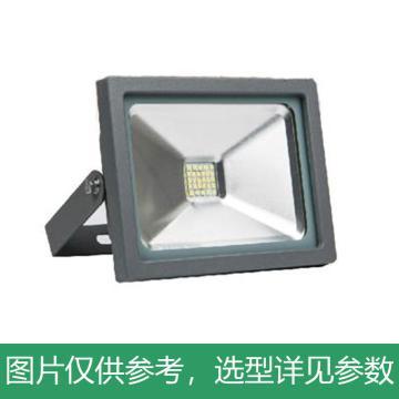 亚牌 LED泛光灯,ZY118 30W 5700K 单位:个