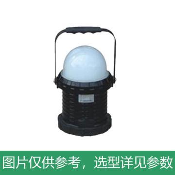 海洋王 FW6330 LED轻便工作灯,单位:个