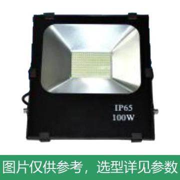 津达 LED泛光灯,KD-FGD-100W 220V IP65 6500K 白光,单位:个