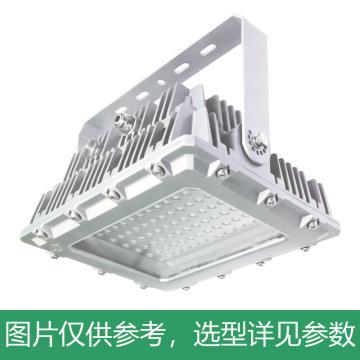 凯瑞 防爆泛光灯,150W,白光,KLE1017-150W,90°配光,配U型支架,单位:个
