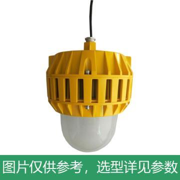 凯瑞 防爆平台灯,80W,白光,KLE1016-80W,吊杆式安装,不含吊杆,单位:个