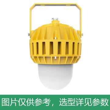 凯瑞 防爆平台灯,100W,白光,KLE1016-100W,配U型支架,单位:个
