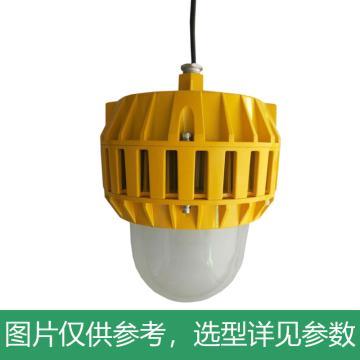 凯瑞 防爆平台灯,100W,白光,KLE1016-100W,吊杆式安装,不含吊杆,单位:个