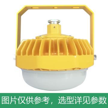 凯瑞 防爆平台灯,36W,白光,KLE1012-36W,配U型支架,单位:个