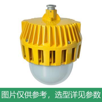 凯瑞 防爆平台灯,36W,白光,KLE1018-36W,普通款,吊杆式安装,不含吊杆,单位:个