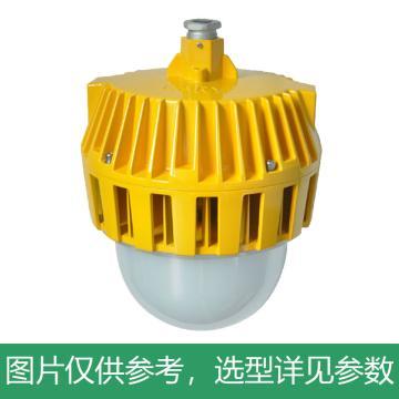 凯瑞 防爆平台灯,50W,白光,KLE1018-50W,普通款,吊杆式安装,不含吊杆,单位:个