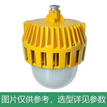 凯瑞 防爆平台灯,70W,白光,KLE1018-70W,普通款,吊杆式安装,不含吊杆,单位:个