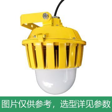 凯瑞 防爆平台灯,80W,白光,KLE1018-80W-ZN,智能款,配U型支架,单位:个