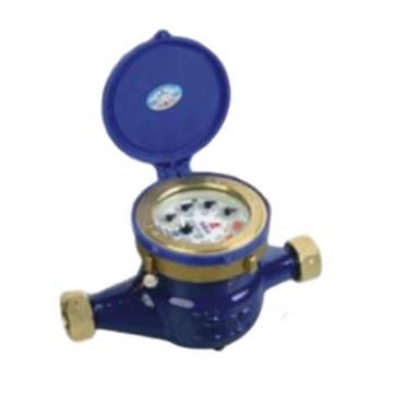 埃美柯/AMICO 铁壳旋翼湿式热水表,LXSR-50E,法兰连接,销售代号:097-DN50