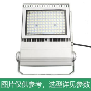 耀嵘照明 LED泛光灯,100W,白光,YR-FL330-W100,含U型支架,单位:个