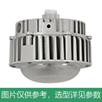 耀嵘照明 LED平台灯,30W,白光,YR-SF296-W30,吊杆式安装,不含吊杆,单位:个